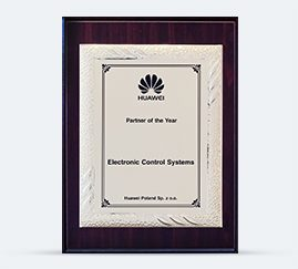 HUAWEI Partner od the Year 2010